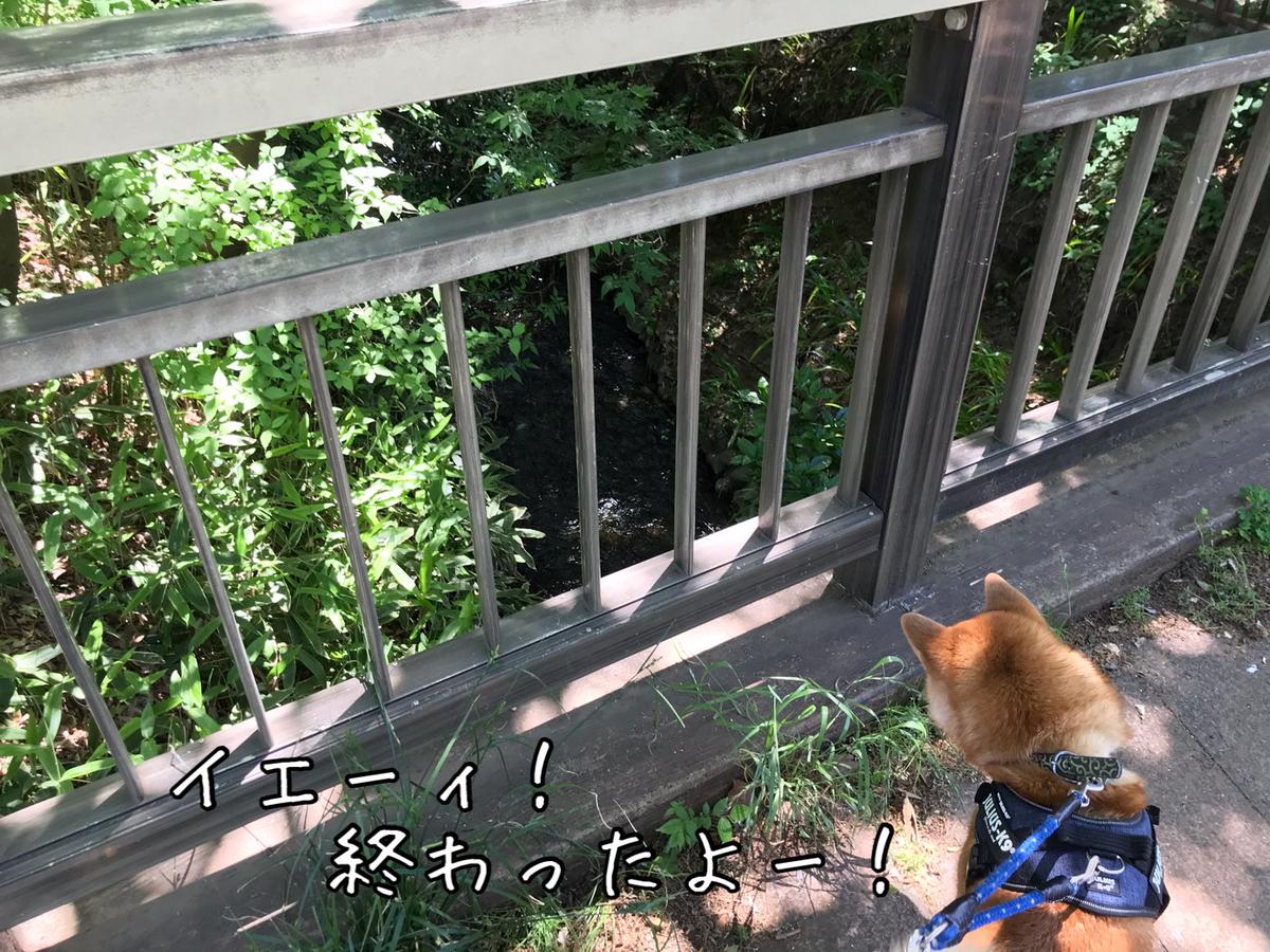 f:id:tetsujin64go:20200514130450j:plain