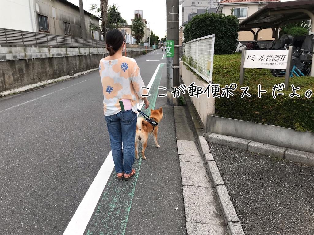 f:id:tetsujin64go:20200707173632j:image