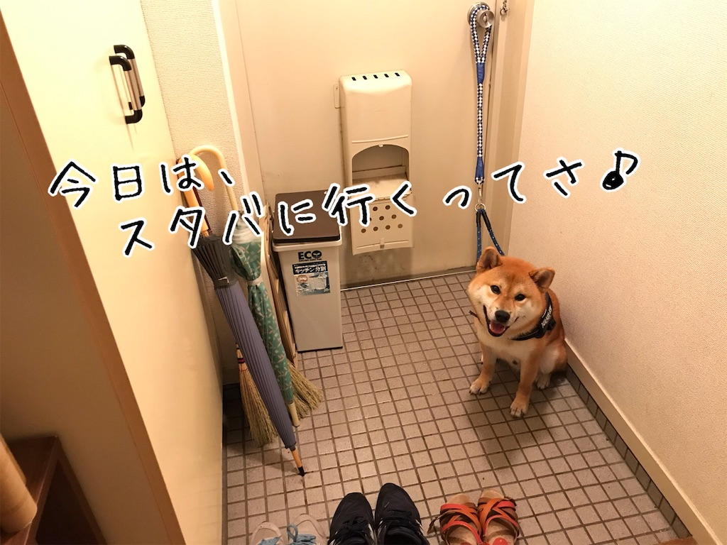 f:id:tetsujin64go:20200708103643j:image