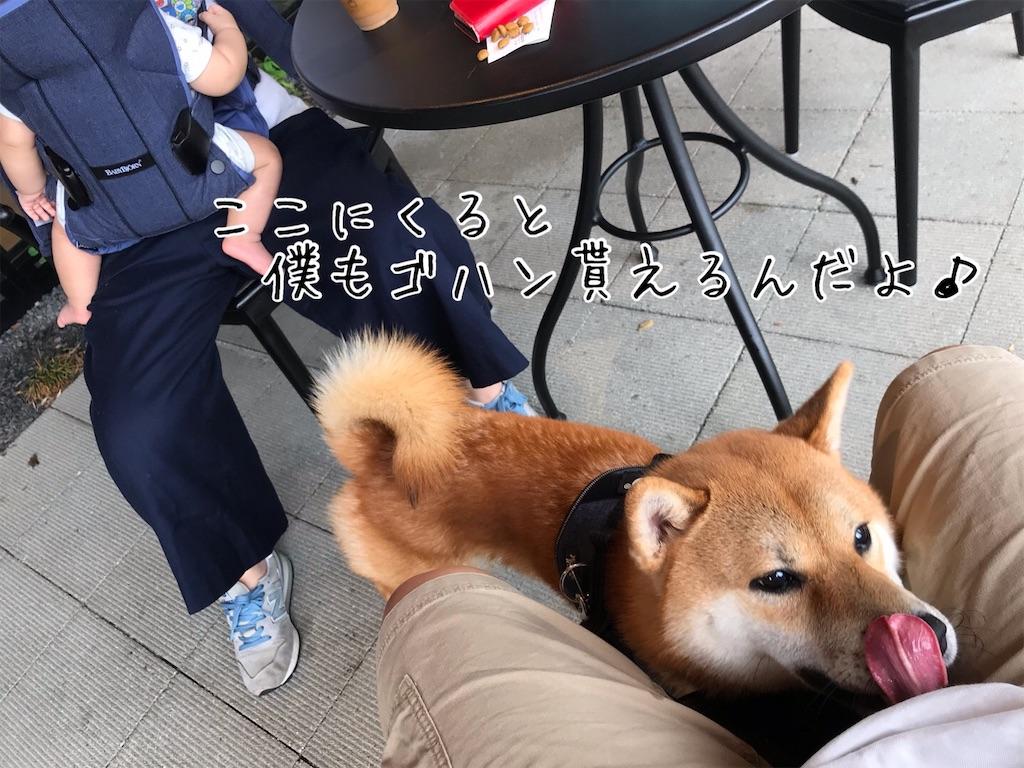 f:id:tetsujin64go:20200708103646j:image