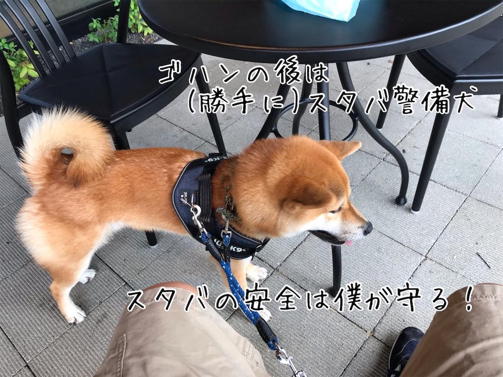 f:id:tetsujin64go:20200708103649j:image