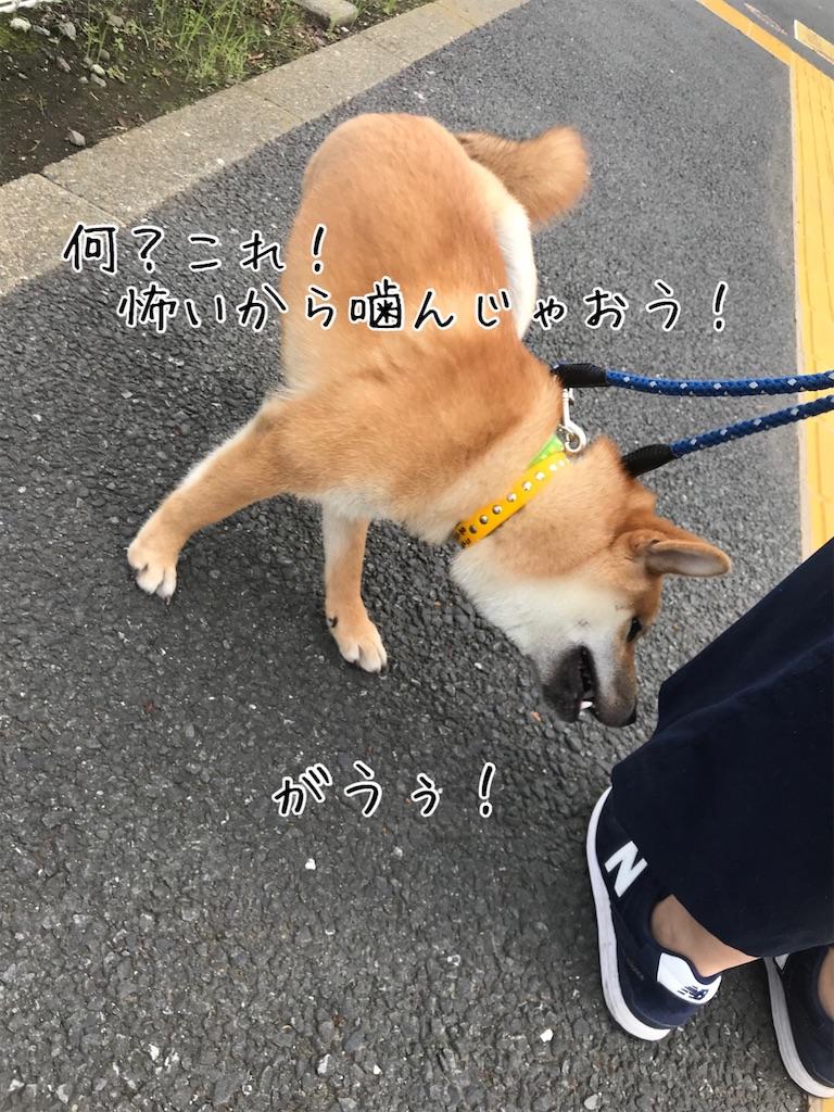 f:id:tetsujin64go:20200708201756j:image