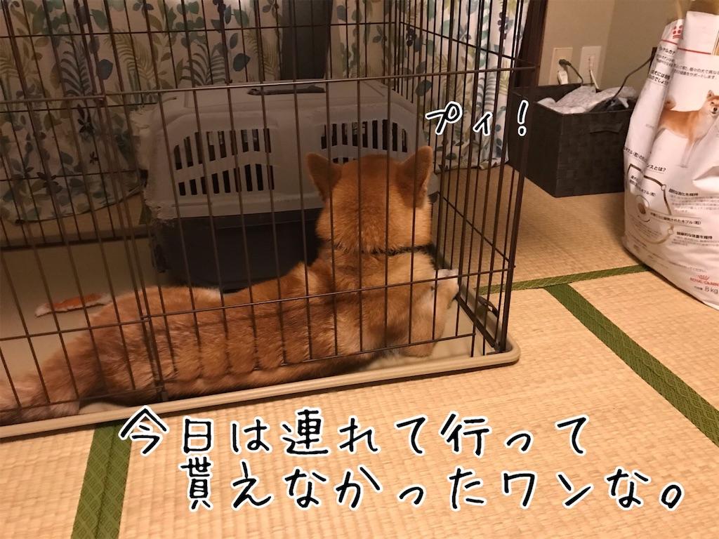 f:id:tetsujin64go:20200710134123j:image