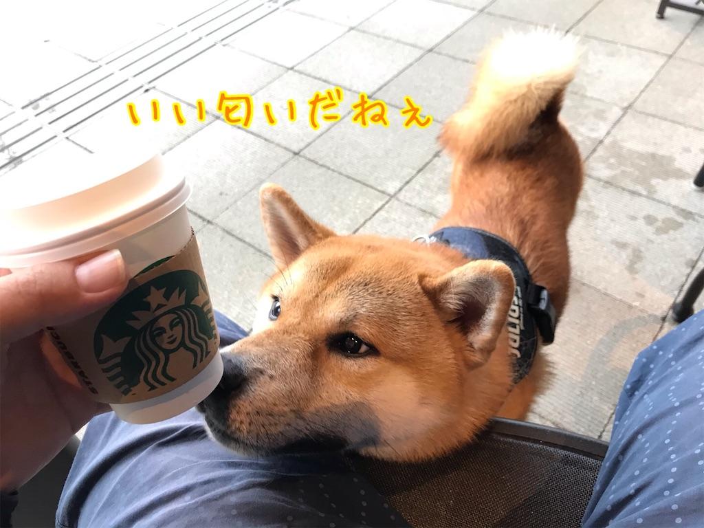 f:id:tetsujin64go:20200714091646j:image