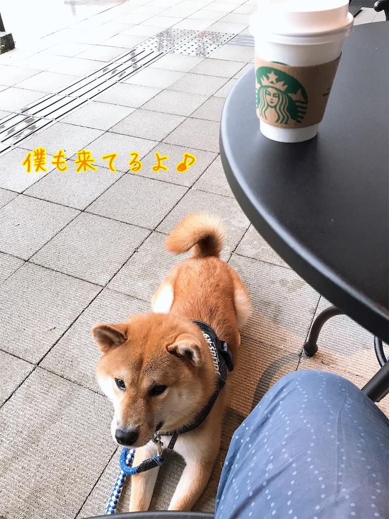 f:id:tetsujin64go:20200714091649j:image