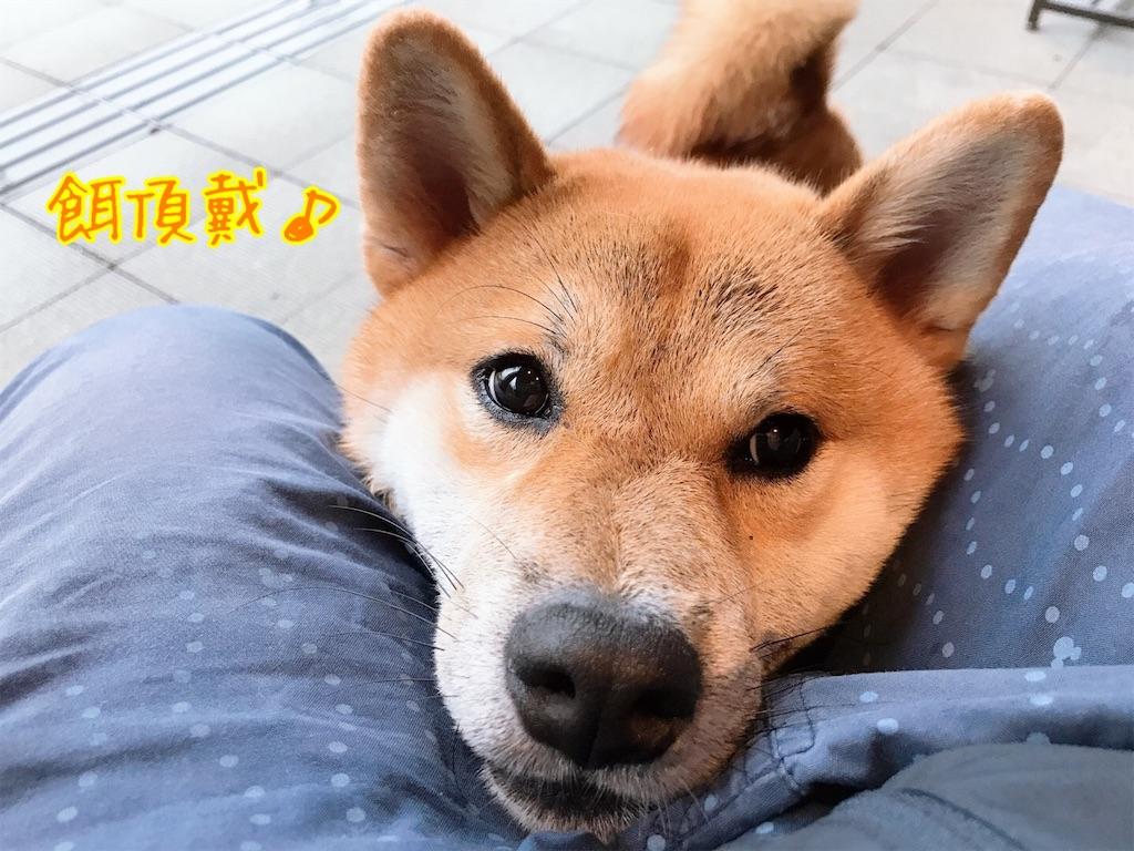 f:id:tetsujin64go:20200714091659j:image