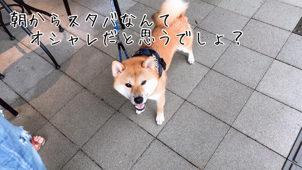 f:id:tetsujin64go:20200723101145j:image
