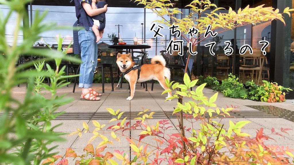 f:id:tetsujin64go:20200723101148j:image
