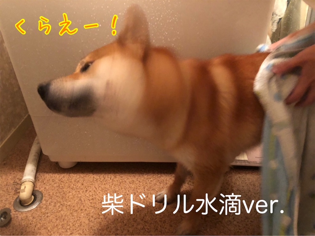 f:id:tetsujin64go:20200724131825j:image