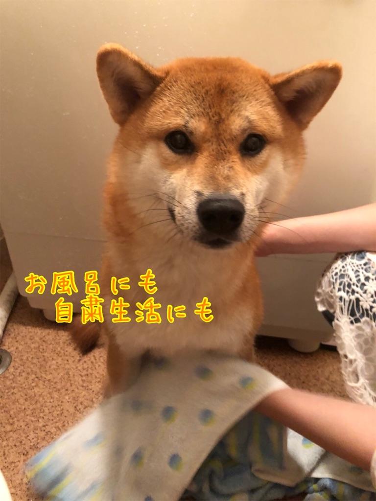 f:id:tetsujin64go:20200724133327j:image
