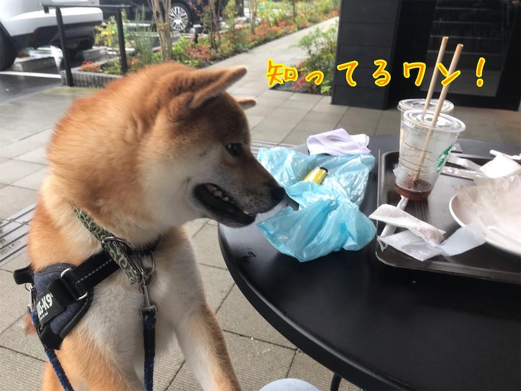 f:id:tetsujin64go:20200726134501j:image