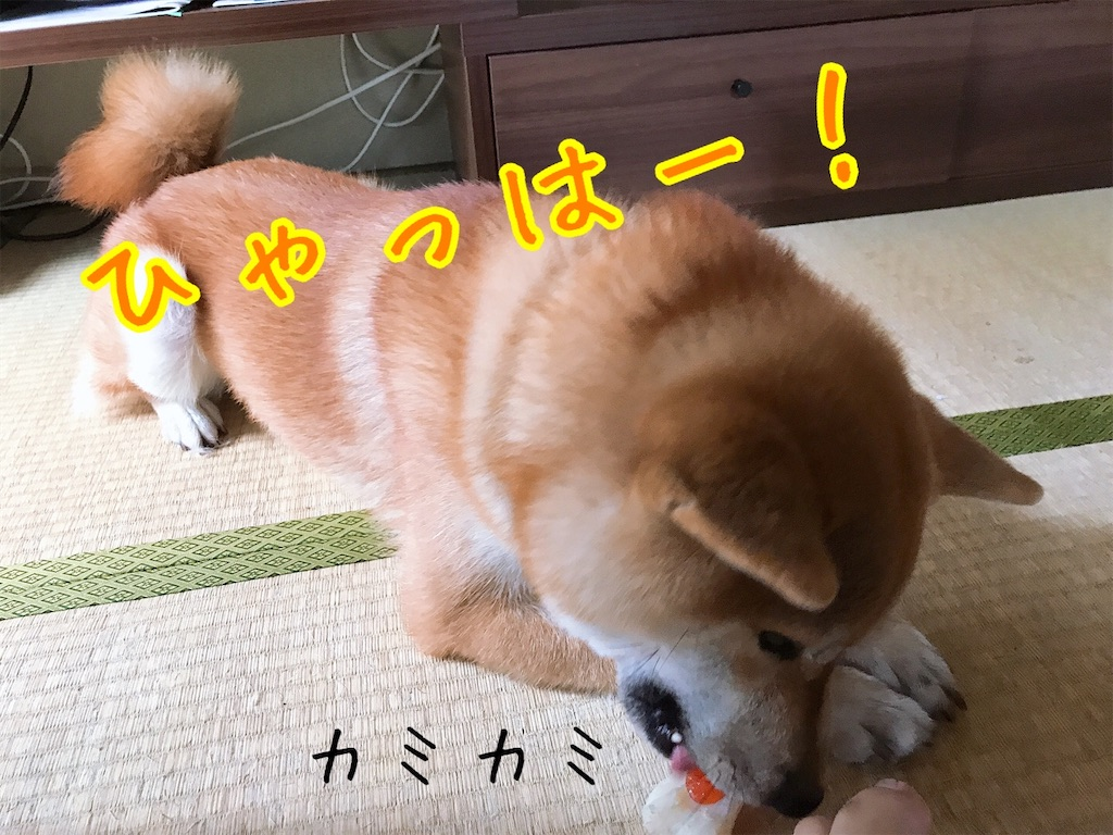 f:id:tetsujin64go:20200804145051j:image