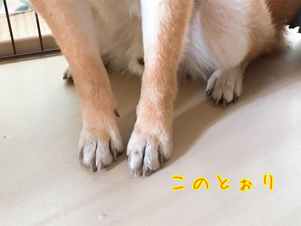 f:id:tetsujin64go:20200804162501j:image