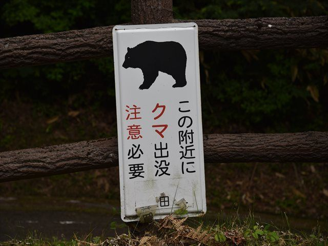 f:id:tetsujin96:20190630124905j:plain