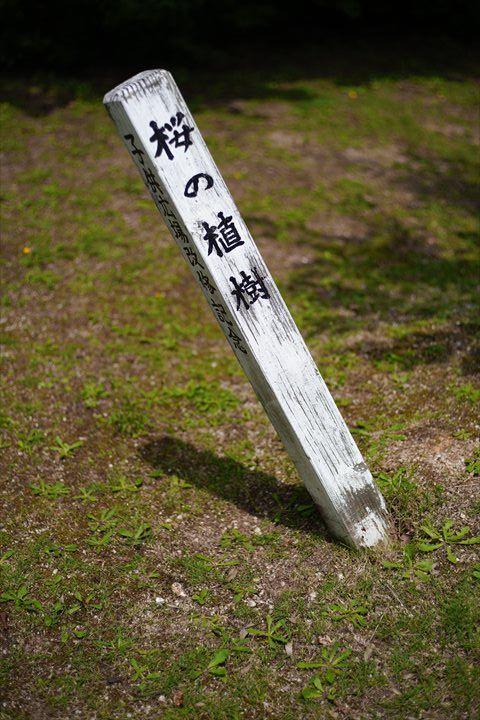 f:id:tetsujin96:20200811214946j:plain