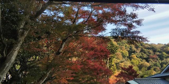 f:id:tetsuuma:20181201170457j:image