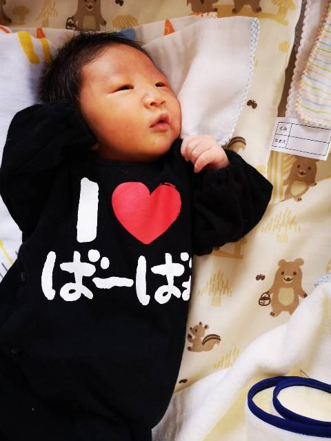 f:id:tetsuuma:20190520053350j:image