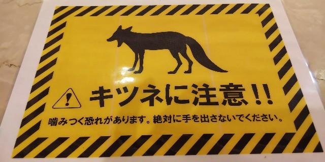 f:id:tetsuuma:20190701175441j:image