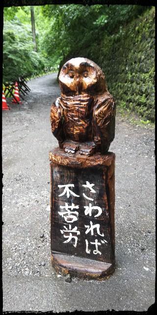f:id:tetsuuma:20190705122942j:image