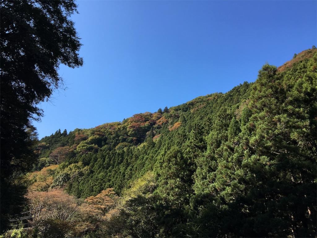 f:id:tetsuuma:20191111171925j:image