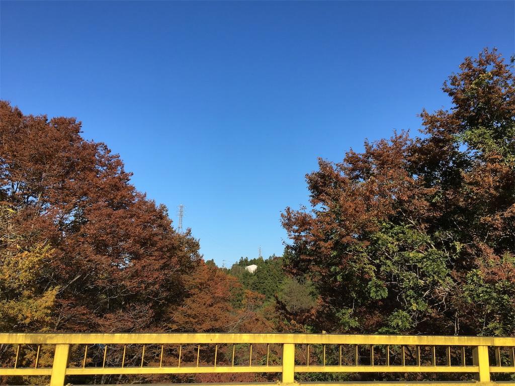 f:id:tetsuuma:20191111180022j:image