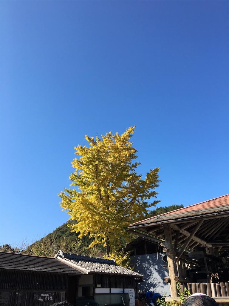 f:id:tetsuuma:20191112025117j:image