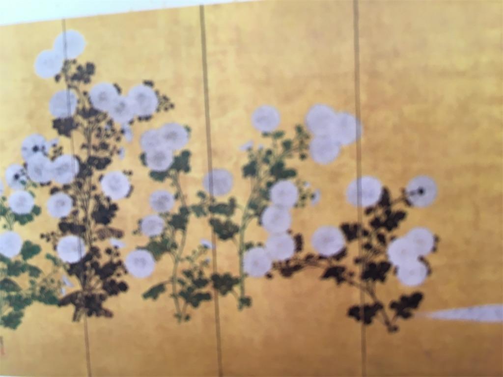 f:id:tetsuuma:20200202165432j:image