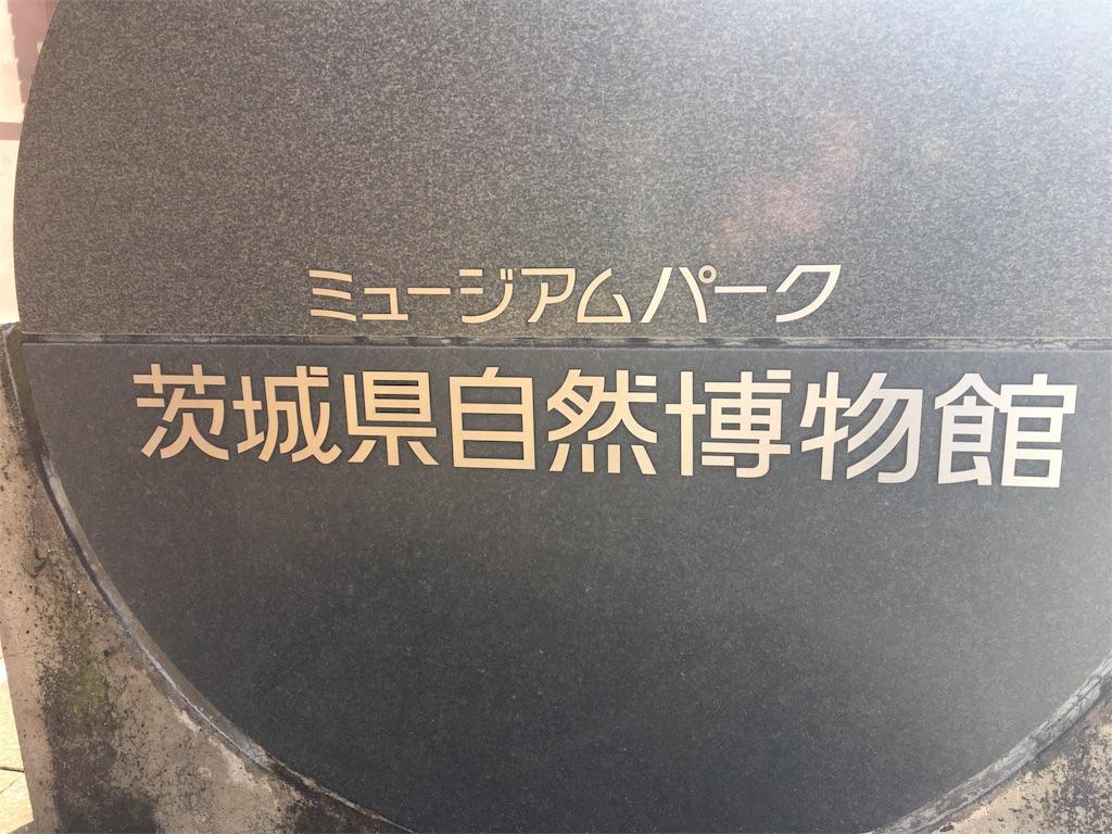f:id:tetsuuma:20200316111219j:image