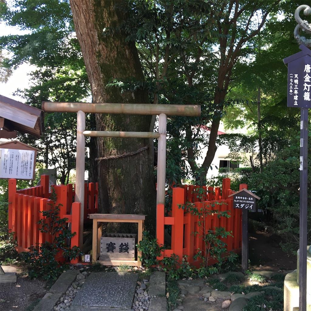 f:id:tetsuuma:20200906154319j:image