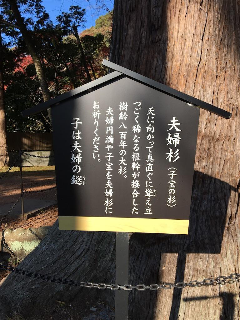 f:id:tetsuuma:20201225023642j:image
