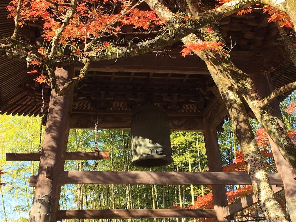 f:id:tetsuuma:20201226145921j:image