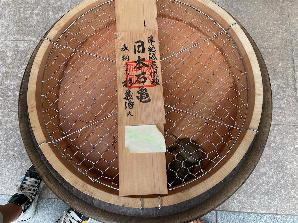f:id:tetsuuma:20210831031914j:image