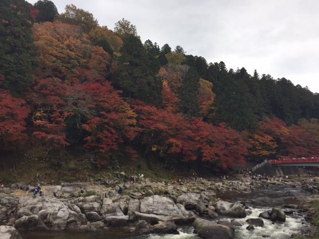f:id:tetsuyama2000:20161122114554j:plain