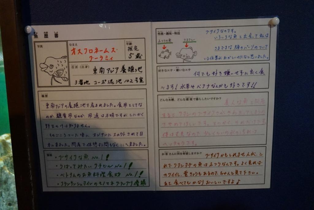 f:id:tetsuyama2000:20170720161749j:plain