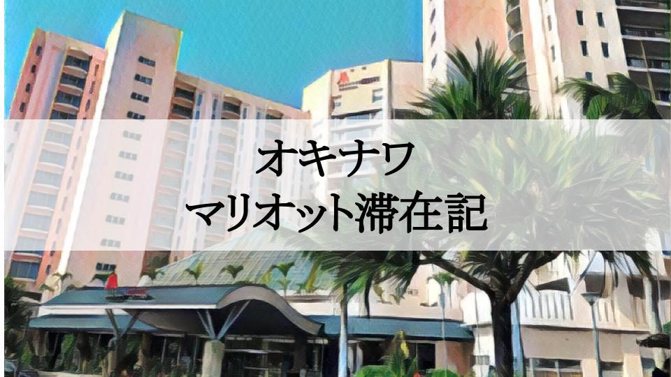 f:id:tetsuyama2000:20190609013405j:plain