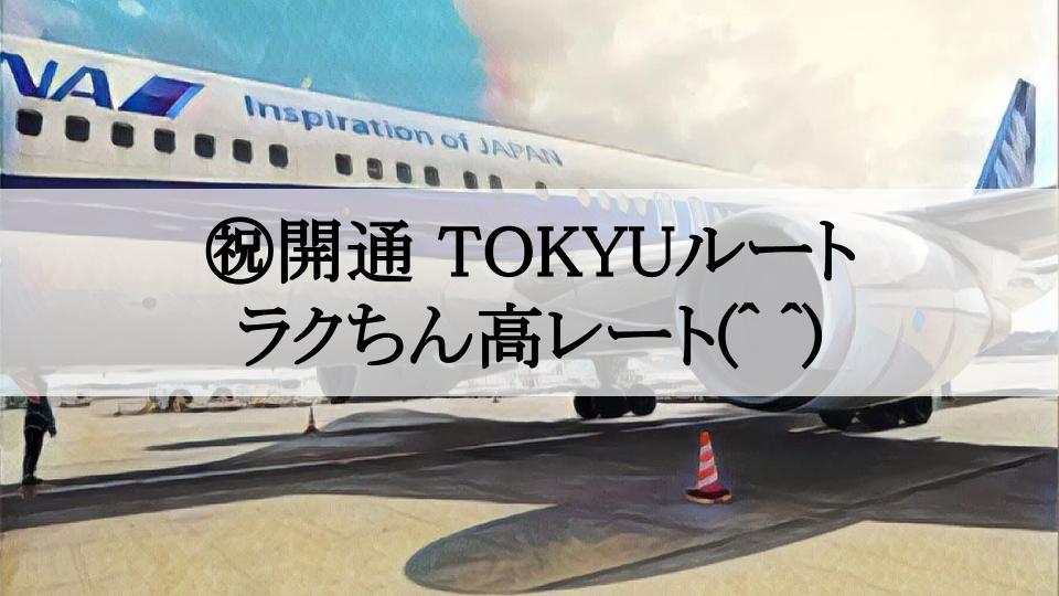 f:id:tetsuyama2000:20190611161659j:plain