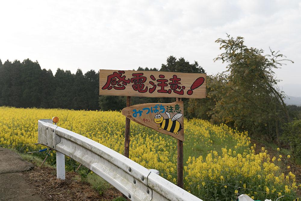 f:id:tetsuyameow:20170419202037j:plain