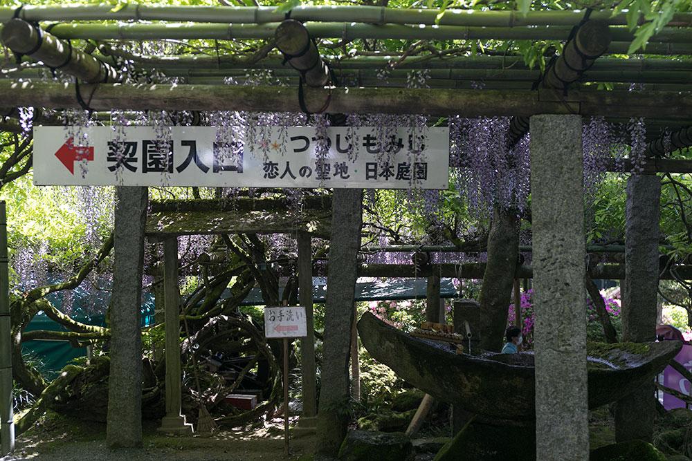 f:id:tetsuyameow:20170528143634j:plain