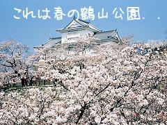 f:id:tetsuyaota:20071010155253j:image