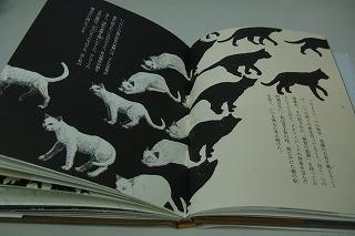 f:id:tetsuyaota:20090423140545j:image