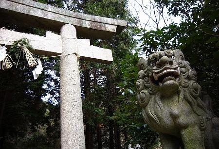 f:id:tetsuyaota:20091225130024j:image