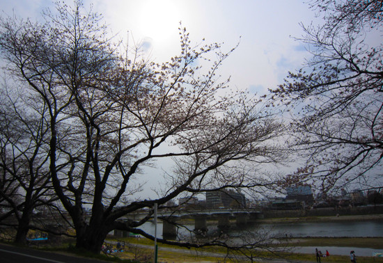 f:id:tetsuyaota:20110402193801j:image