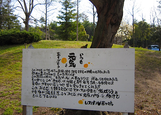 f:id:tetsuyaota:20110411142002j:image