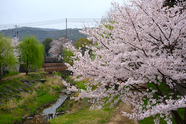 f:id:tetsuyaota:20130404175928j:image