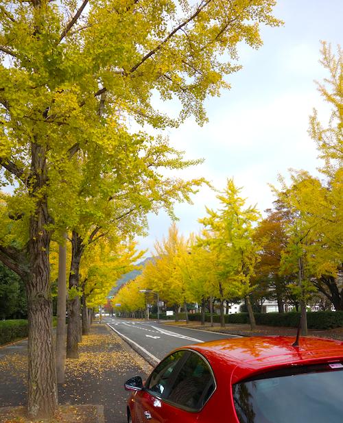 f:id:tetsuyaota:20131113174344j:plain