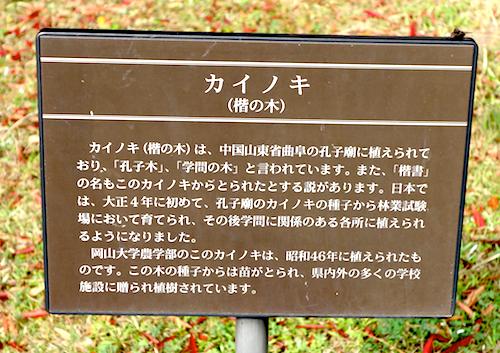 f:id:tetsuyaota:20131113174813j:plain