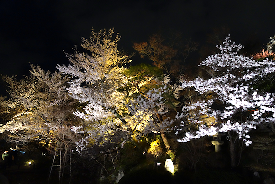 f:id:tetsuyaota:20140406135831j:plain