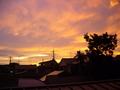 [空]2008-07-27 赤い空