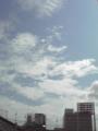 [広島][空][広島市民球場]広島東洋カープ