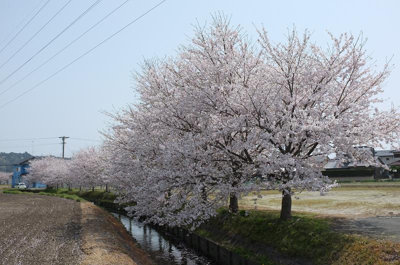 f:id:tfujimura:20110411142555j:image:w640
